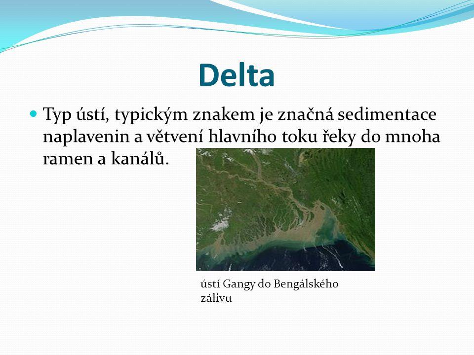 Delta Typ ústí, typickým znakem je značná sedimentace naplavenin a větvení hlavního toku řeky do mnoha ramen a kanálů. ústí Gangy do Bengálského záliv