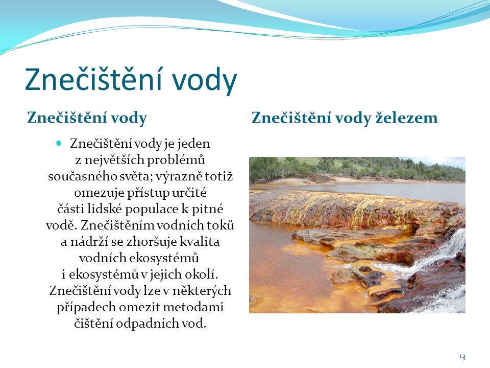 Znečištění vody Znečištění vody železem Znečištění vody je jeden z největších problémů současného světa; výrazně totiž omezuje přístup určité části lidské populace k pitné vodě.