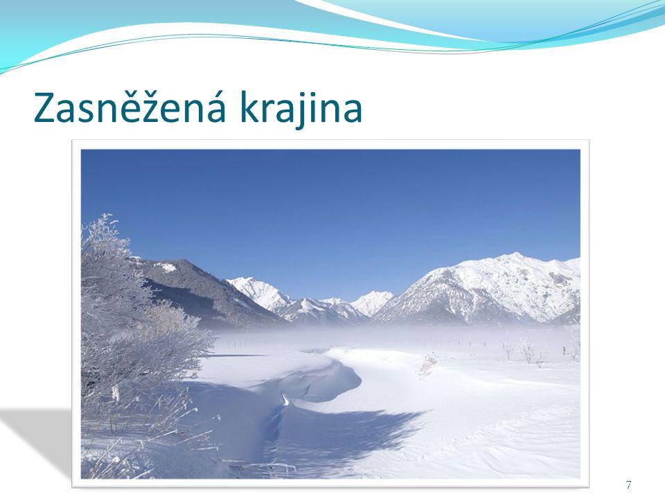 Zasněžená krajina 7