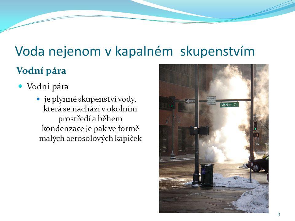 Voda nejenom v kapalném skupenstvím Vodní pára je plynné skupenství vody, která se nachází v okolním prostředí a během kondenzace je pak ve formě malých aerosolových kapiček 9
