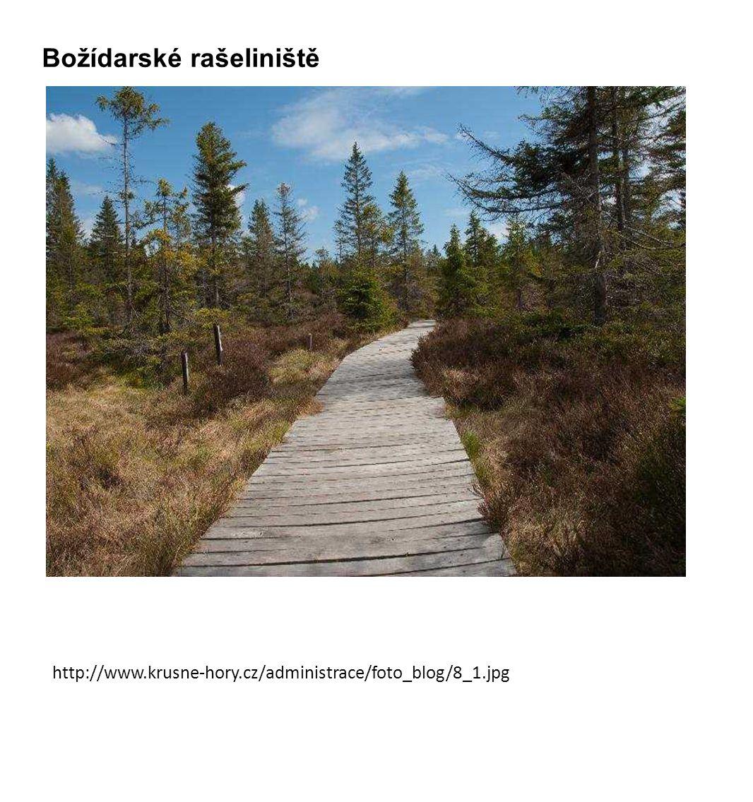 http://www.krusne-hory.cz/administrace/foto_blog/8_1.jpg Božídarské rašeliniště