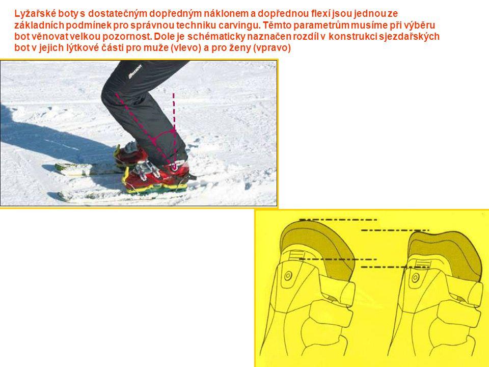Lyžařské boty s dostatečným dopředným náklonem a dopřednou flexí jsou jednou ze základních podmínek pro správnou techniku carvingu. Těmto parametrům m