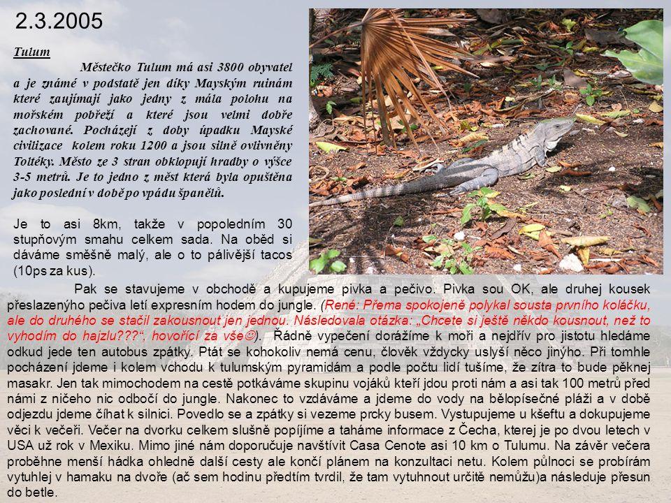 2.3.2005 Tulum Městečko Tulum má asi 3800 obyvatel a je známé v podstatě jen díky Mayským ruinám které zaujímají jako jedny z mála polohu na mořském pobřeží a které jsou velmi dobře zachované.