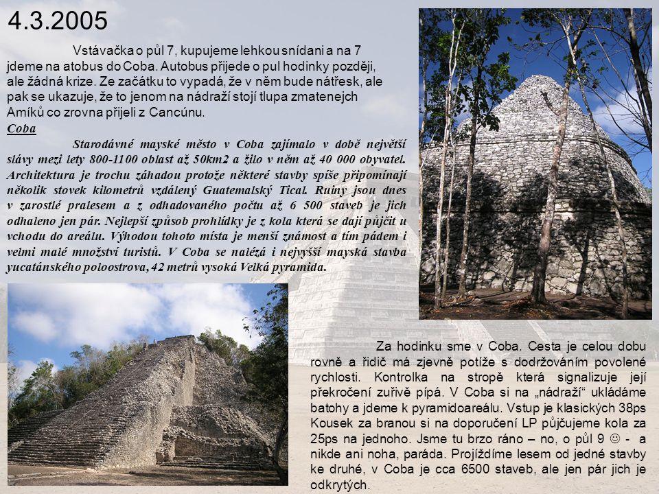 4.3.2005 Coba Starodávné mayské město v Coba zajímalo v době největší slávy mezi lety 800-1100 oblast až 50km2 a žilo v něm až 40 000 obyvatel.