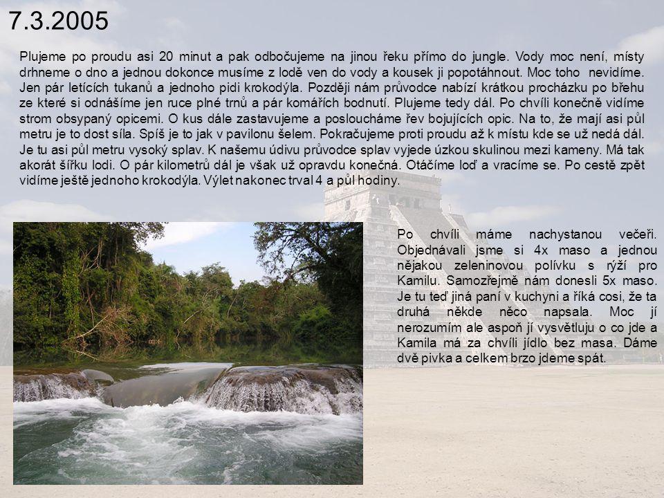 7.3.2005 Plujeme po proudu asi 20 minut a pak odbočujeme na jinou řeku přímo do jungle.