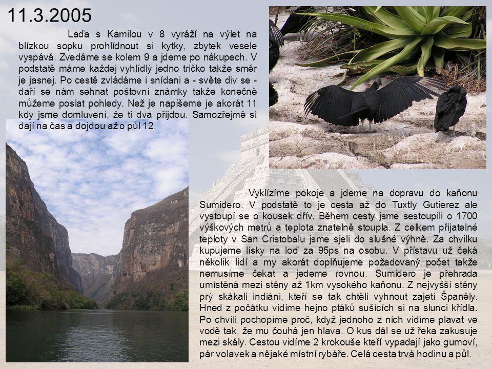 11.3.2005 Laďa s Kamilou v 8 vyráží na výlet na blízkou sopku prohlídnout si kytky, zbytek vesele vyspává.
