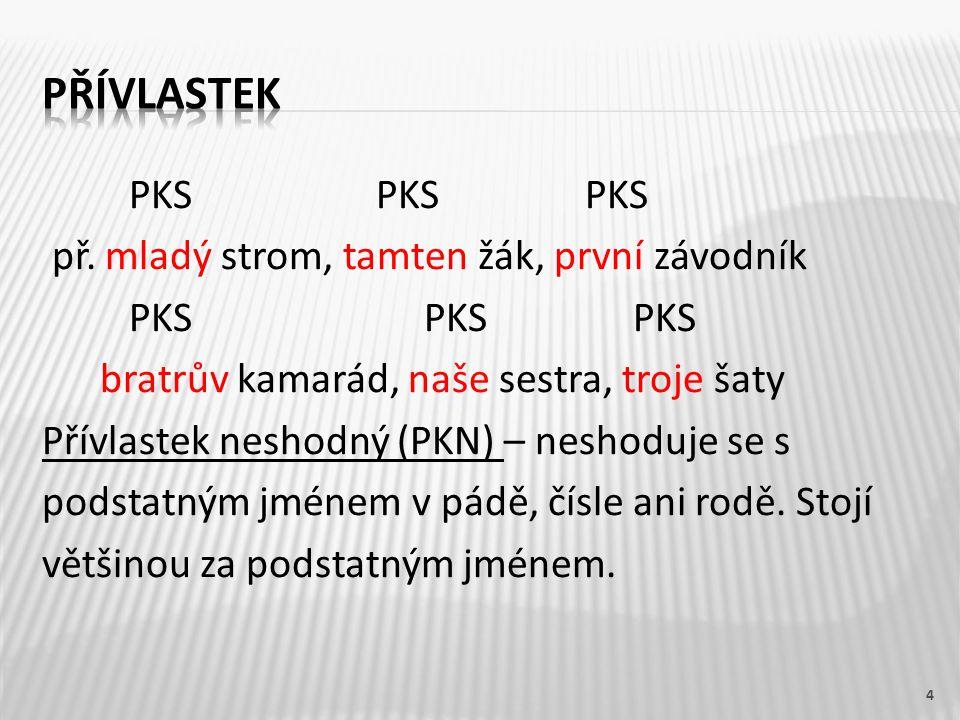 PKS PKS PKS př. mladý strom, tamten žák, první závodník PKS PKS PKS bratrův kamarád, naše sestra, troje šaty Přívlastek neshodný (PKN) – neshoduje se