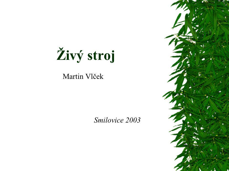 Živý stroj Martin Vlček Smilovice 2003
