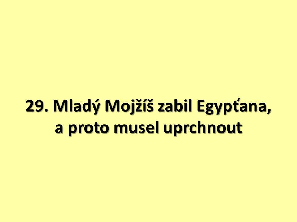 Mojžíš vyrůstá na faraónově dvoře, dostal krásné šaty, byl obsluhován otroky.