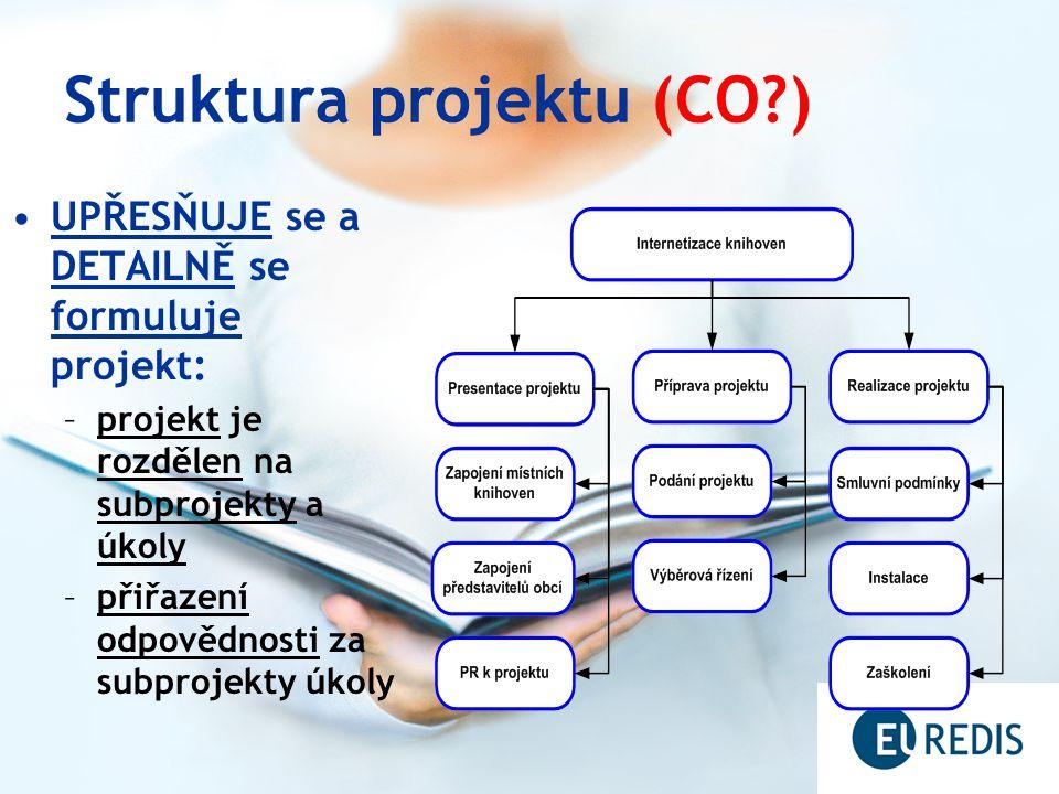 Projektová organizace (KDO?) Popis funkcí týmů a členů řešitelských týmů