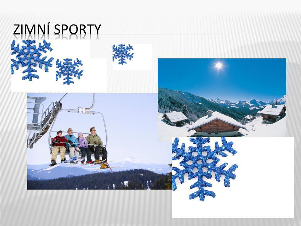 Zimní sporty jsou velice zdravé, protože základem je pobyt v zimní přírodě nebo přímo na horách.