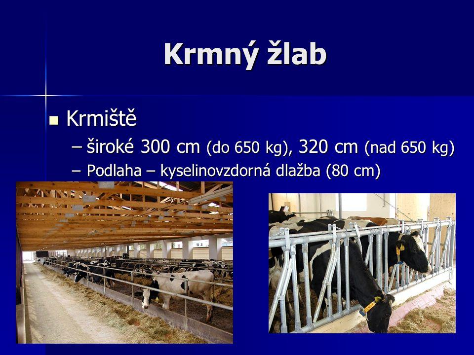 Krmný žlab Krmiště Krmiště –široké 300 cm (do 650 kg), 320 cm (nad 650 kg) –Podlaha – kyselinovzdorná dlažba (80 cm)