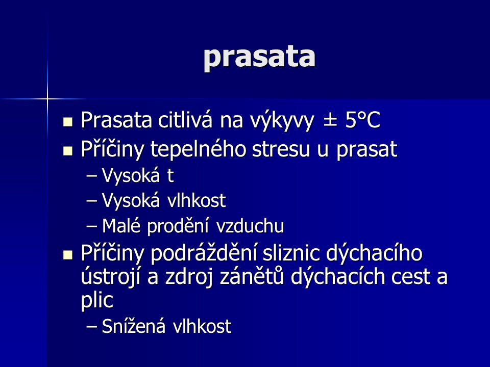prasata Prasata citlivá na výkyvy ± 5°C Prasata citlivá na výkyvy ± 5°C Příčiny tepelného stresu u prasat Příčiny tepelného stresu u prasat –Vysoká t
