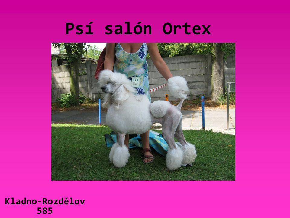 Psí salón Ortex Kladno-Rozdělov 585