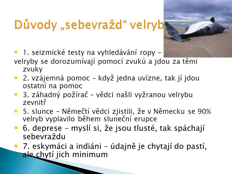 1. seizmické testy na vyhledávání ropy - velryby se dorozumívají pomocí zvuků a jdou za těmi zvuky 2. vzájemná pomoc – když jedna uvízne, tak jí jdou
