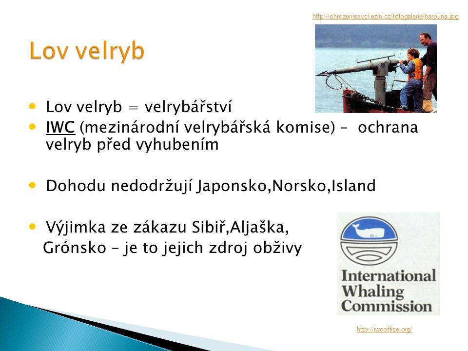 Lov velryb = velrybářství IWC (mezinárodní velrybářská komise) – ochrana velryb před vyhubením Dohodu nedodržují Japonsko,Norsko,Island Výjimka ze zákazu Sibiř,Aljaška, Grónsko – je to jejich zdroj obživy http://iwcoffice.org/ http://ohrozenisavci.ezin.cz/fotogalerie/harpuna.jpg