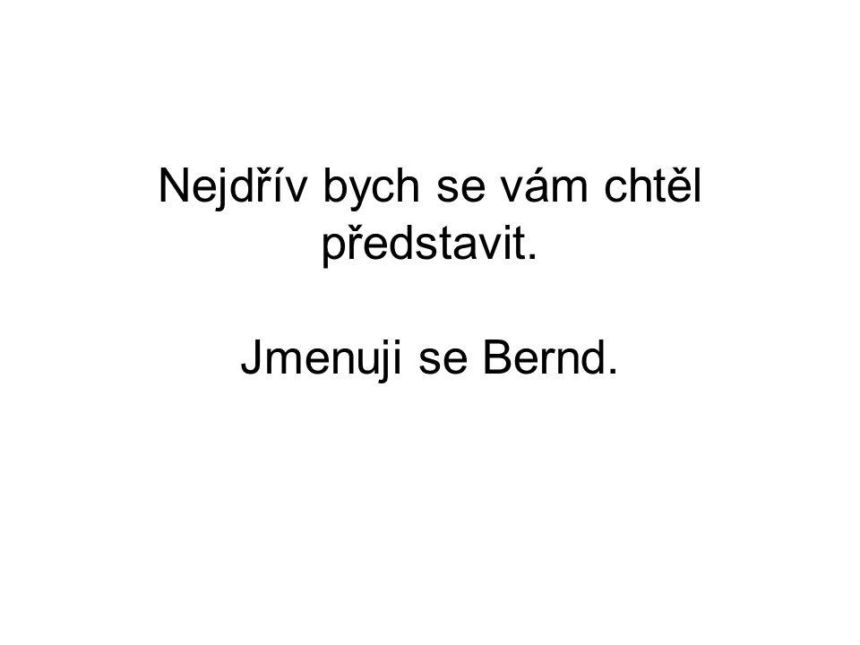 Nejdřív bych se vám chtěl představit. Jmenuji se Bernd.