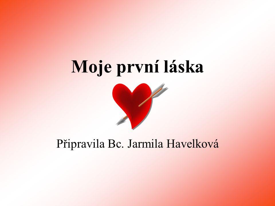 Moje první láska Připravila Bc. Jarmila Havelková
