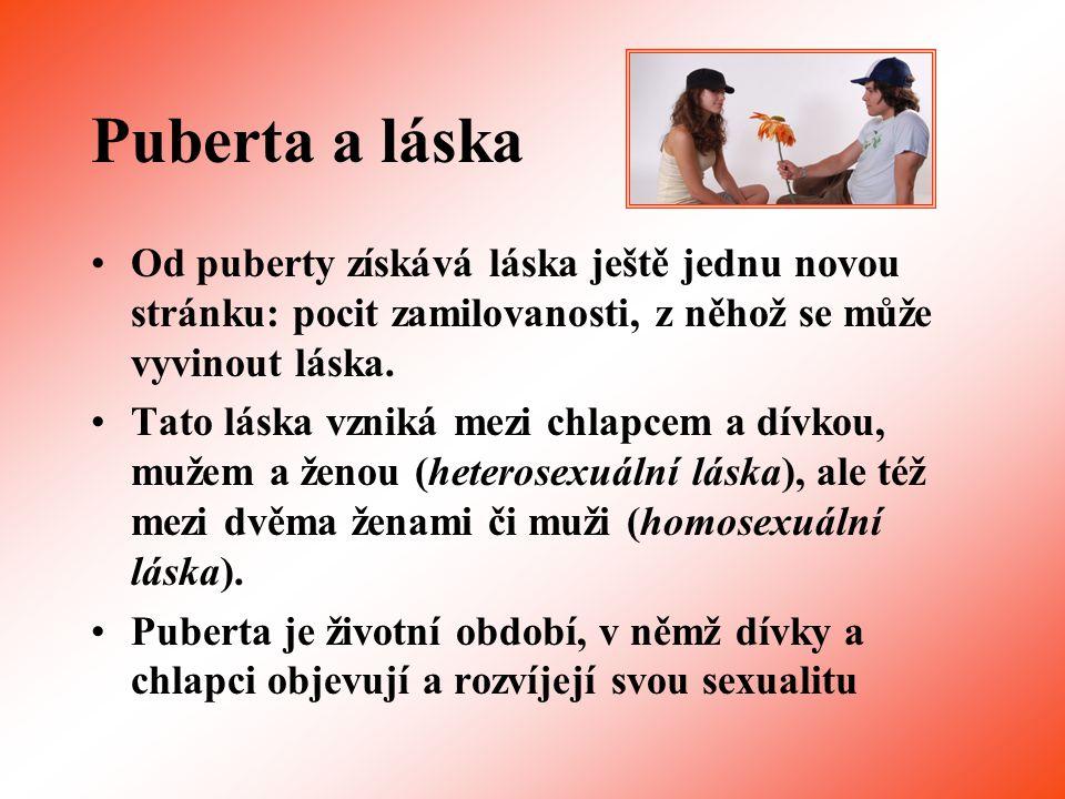 Použité zdroje 1.KAMPWERTHOVÁ, Karin, STRENGOVÁ, Corinna.