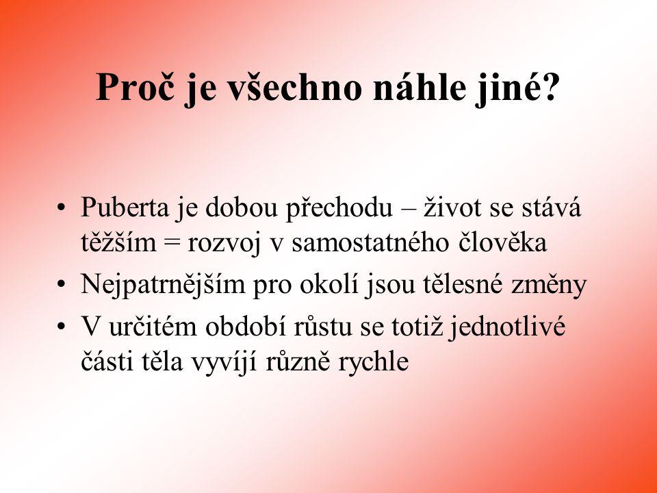Děkuji za pozornost Připravila Jarmila Havelková