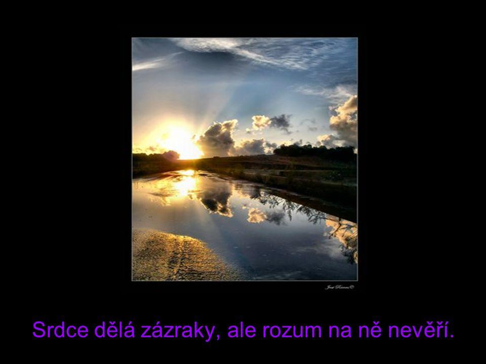 Srdce dělá zázraky, ale rozum na ně nevěří.