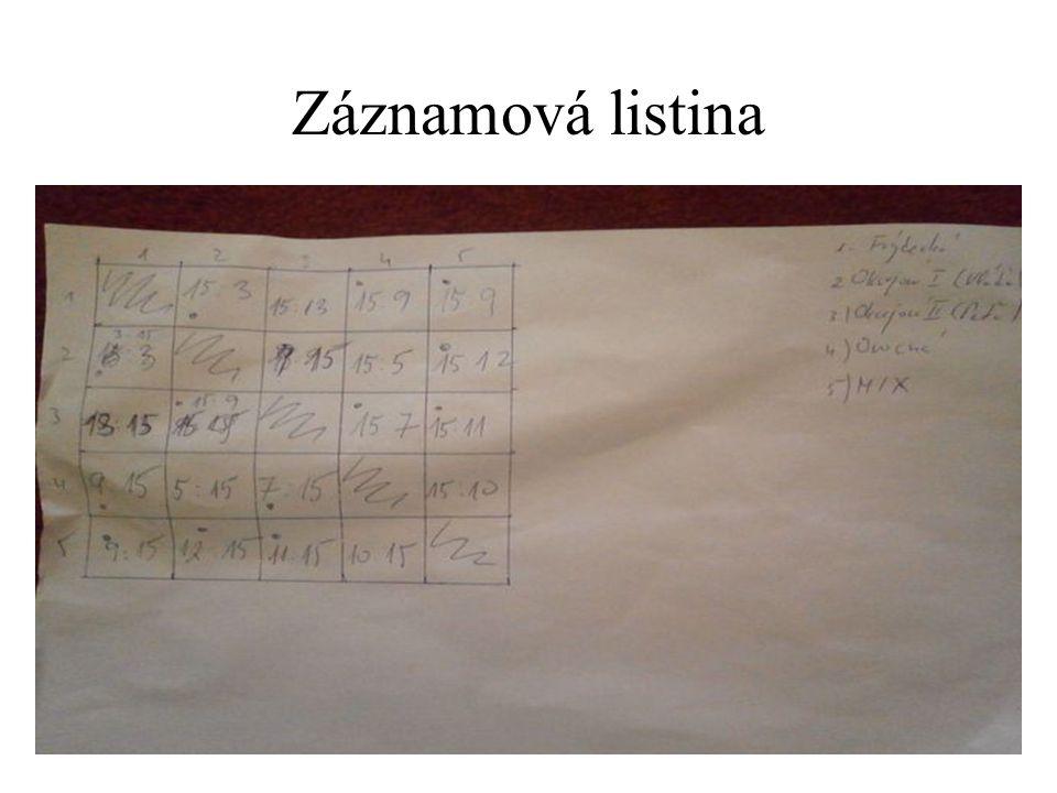 Záznamová listina