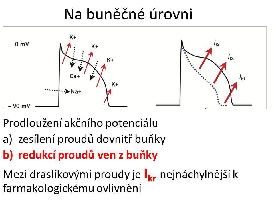 Na buněčné úrovni Prodloužení akčního potenciálu a)zesílení proudů dovnitř buňky b)redukcí proudů ven z buňky Mezi draslíkovými proudy je I kr nejnách