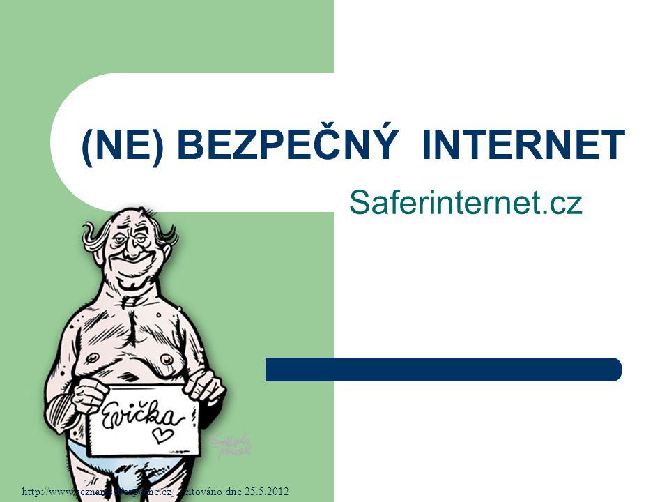 (NE) BEZPEČNÝ INTERNET Saferinternet.cz http://www.seznamsebezpecne.cz/, citováno dne 25.5.2012/