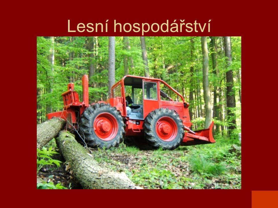 Lesní hospodářství