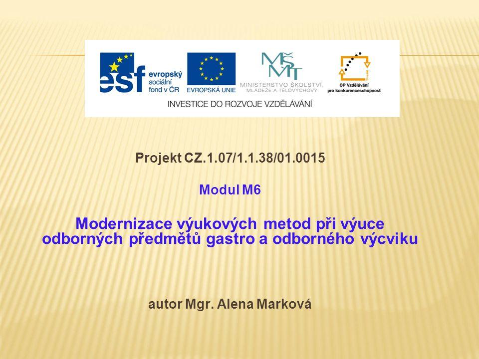 Projekt CZ.1.07/1.1.38/01.0015 Modul M6 Modernizace výukových metod při výuce odborných předmětů gastro a odborného výcviku autor Mgr.