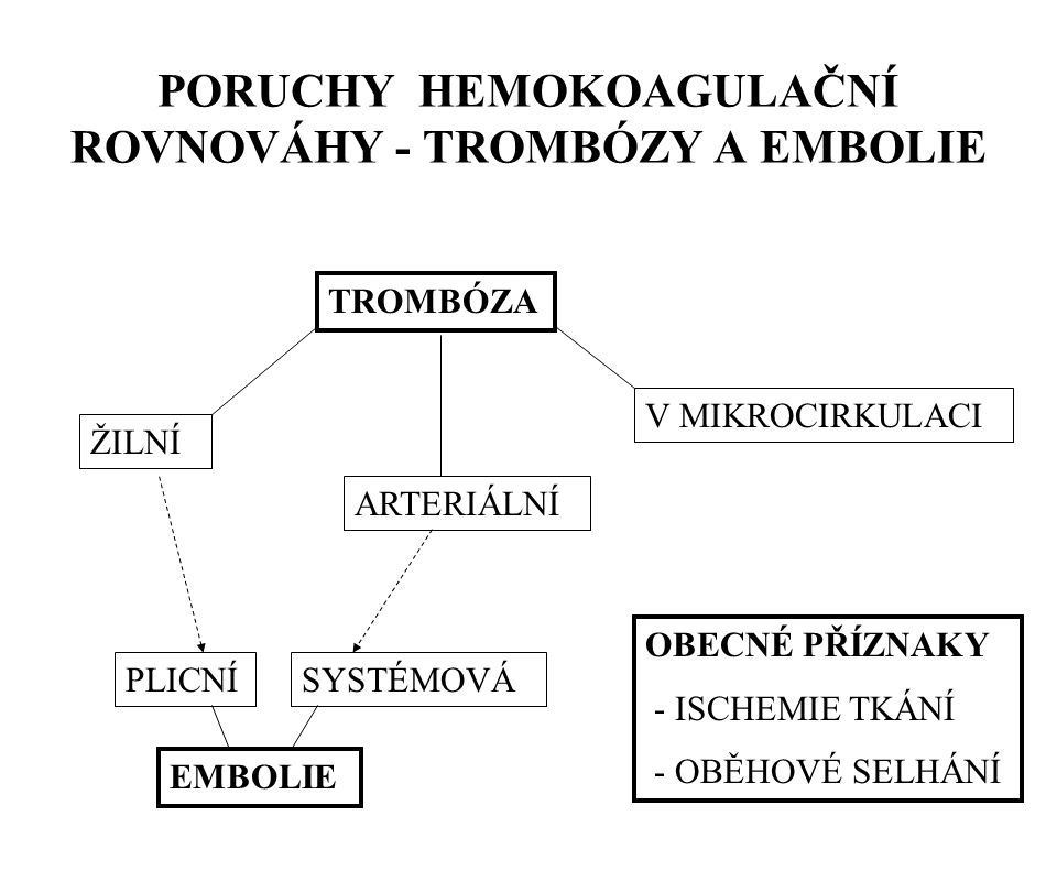 PORUCHY HEMOKOAGULAČNÍ ROVNOVÁHY - TROMBÓZY A EMBOLIE TROMBÓZA V MIKROCIRKULACI ARTERIÁLNÍ ŽILNÍ EMBOLIE PLICNÍSYSTÉMOVÁ OBECNÉ PŘÍZNAKY - ISCHEMIE TK