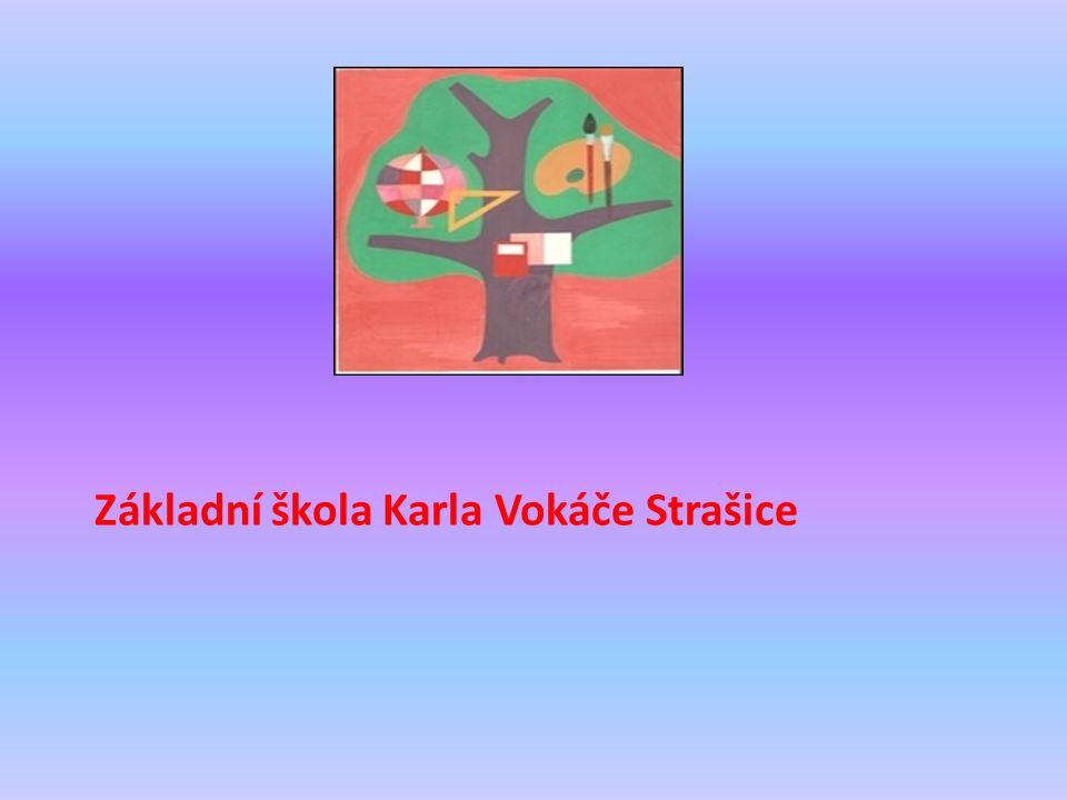Boháčovi Ota Polívka - otec Anna Šlechtová - matka Vendula Mezková dcera-dvojče Tereza Šlapáková dcera -dvojče Petr Anděl - syn