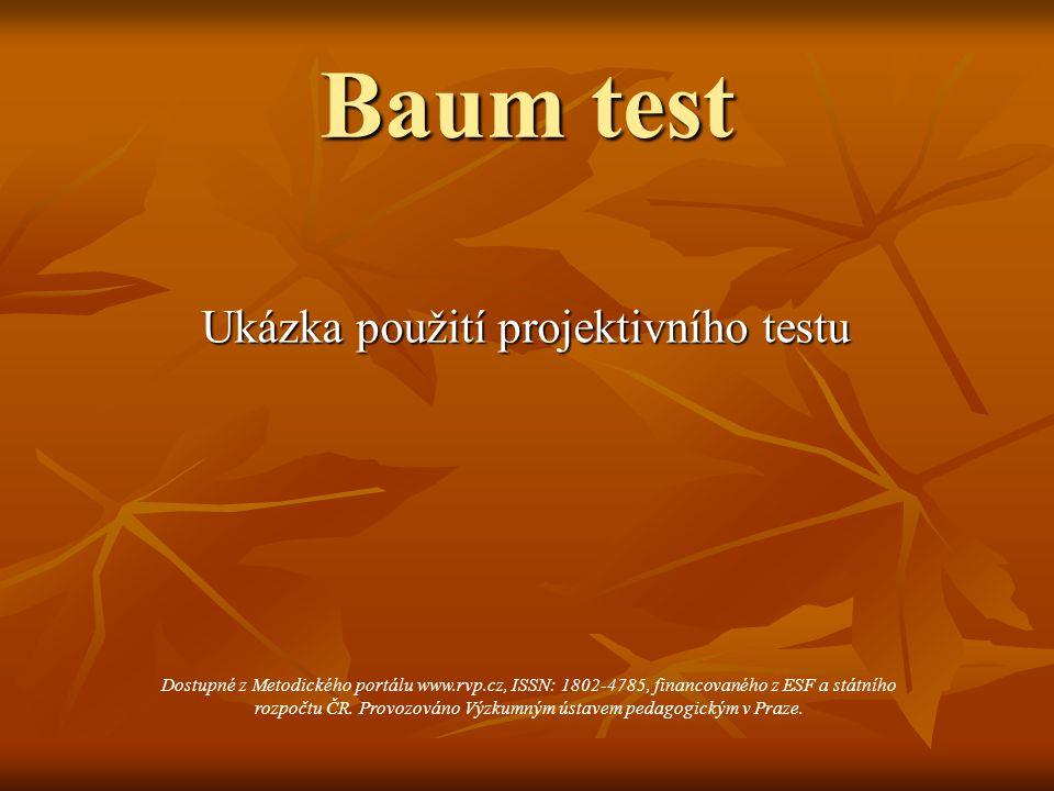 Baum test Ukázka použití projektivního testu Dostupné z Metodického portálu www.rvp.cz, ISSN: 1802-4785, financovaného z ESF a státního rozpočtu ČR. P