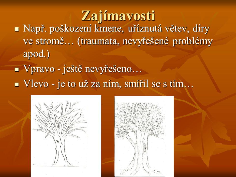Zajímavosti Např. poškození kmene, uříznutá větev, díry ve stromě… (traumata, nevyřešené problémy apod.) Např. poškození kmene, uříznutá větev, díry v
