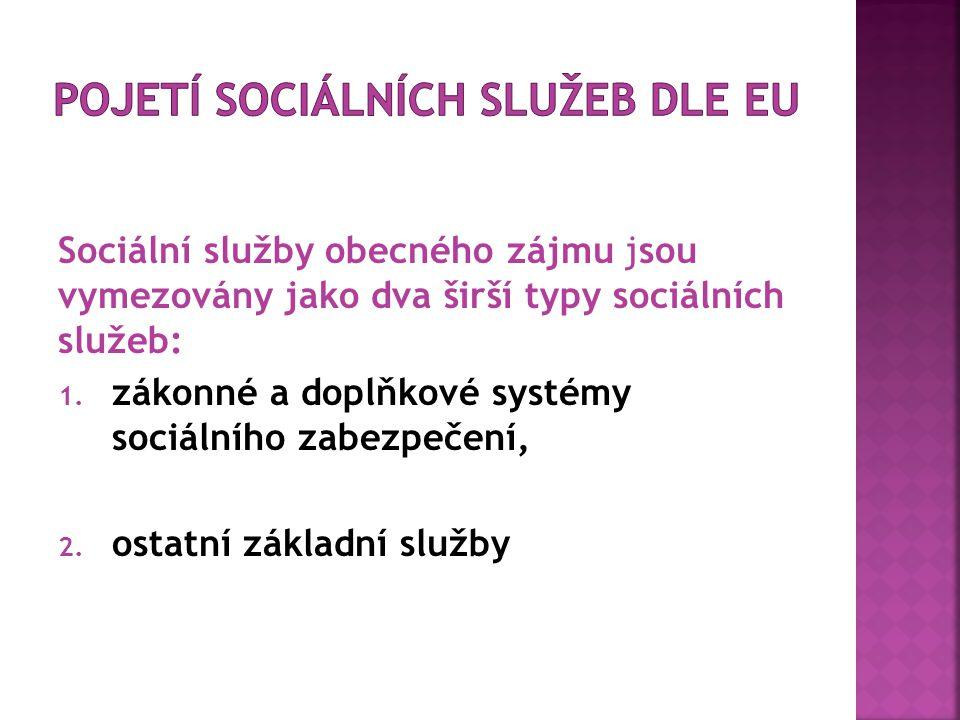 Sociální služby obecného zájmu jsou vymezovány jako dva širší typy sociálních služeb: 1.