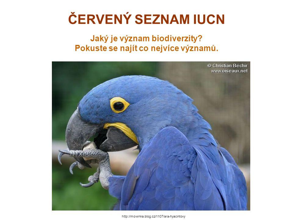ČERVENÝ SEZNAM IUCN Jaký je význam biodiverzity? Pokuste se najít co nejvíce významů. http://mowinka.blog.cz/1107/ara-hyacintovy