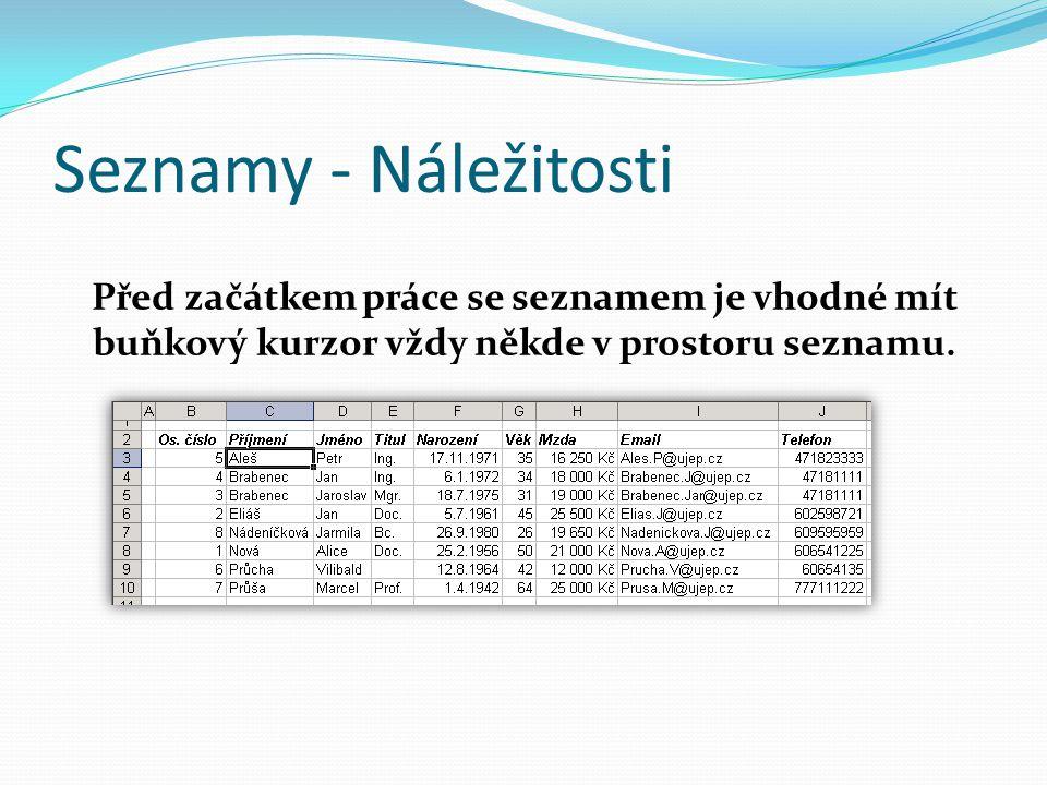 Seznamy - Náležitosti Před začátkem práce se seznamem je vhodné mít buňkový kurzor vždy někde v prostoru seznamu.