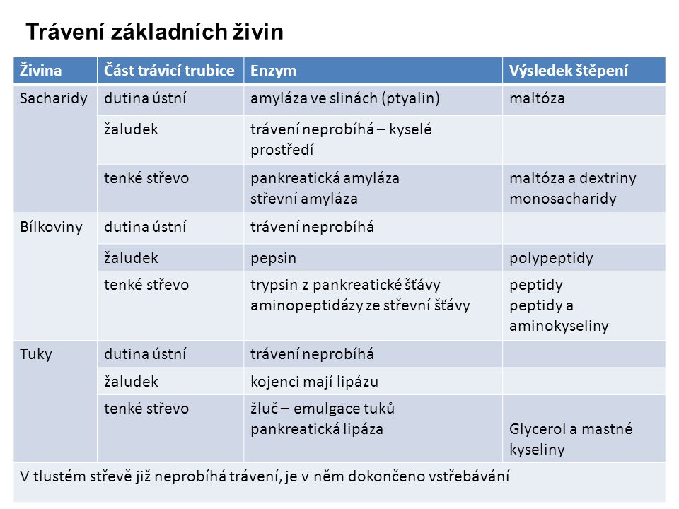 Trávení základních živin ŽivinaČást trávicí trubiceEnzymVýsledek štěpení Sacharidydutina ústníamyláza ve slinách (ptyalin)maltóza žaludektrávení nepro