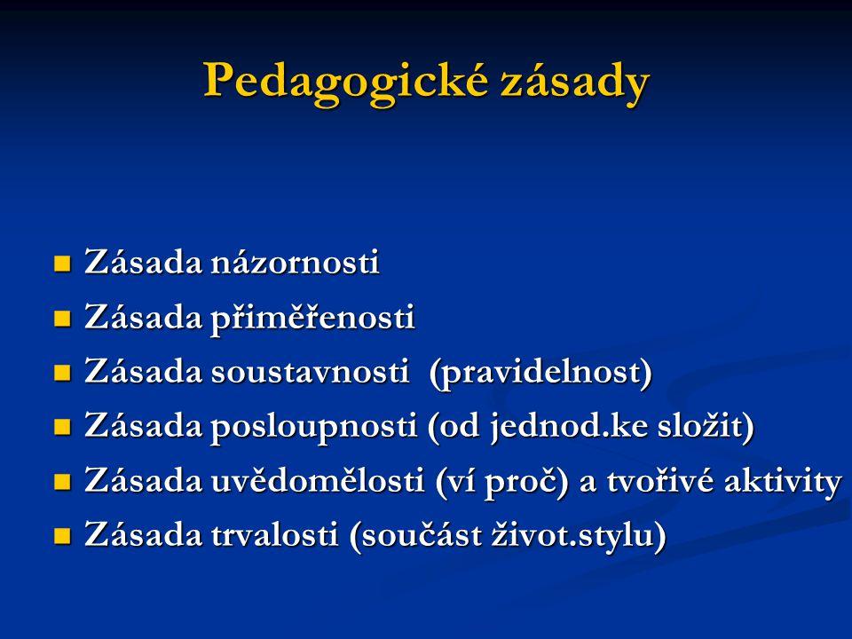 Pedagogické zásady Zásada názornosti Zásada názornosti Zásada přiměřenosti Zásada přiměřenosti Zásada soustavnosti (pravidelnost) Zásada soustavnosti