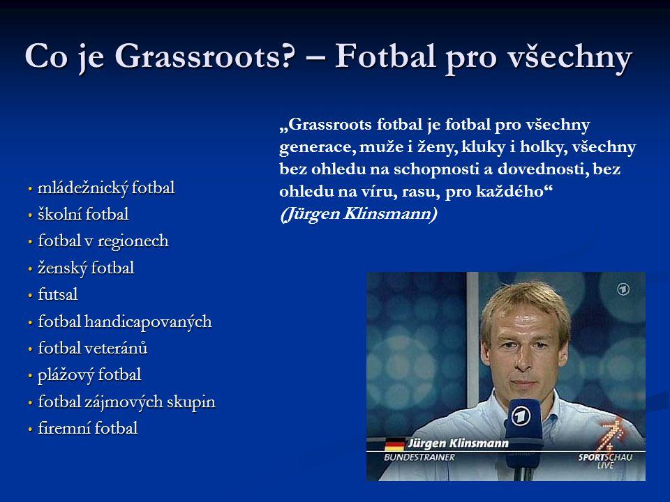 Co je Grassroots? – Fotbal pro všechny mládežnický fotbal mládežnický fotbal školní fotbal školní fotbal fotbal v regionech fotbal v regionech ženský