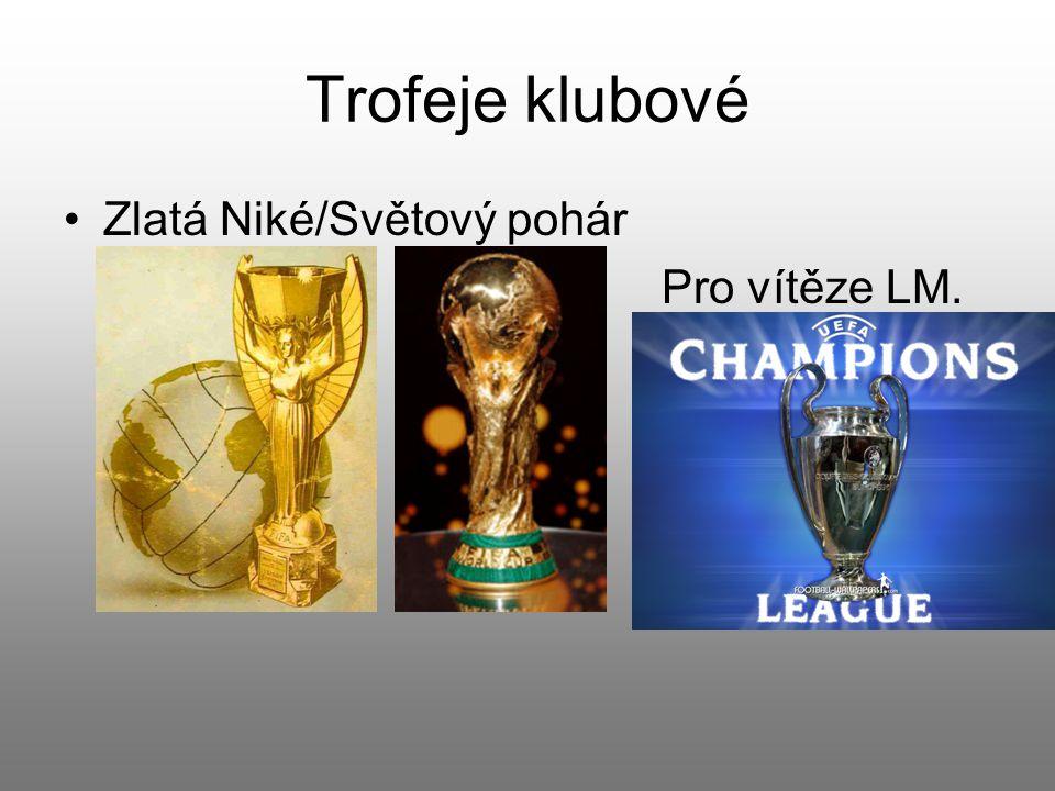 Individuální trofej Zlatý míč.Udílen časopisem France football.
