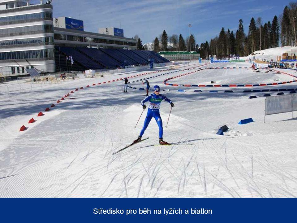 Středisko alpského lyžování