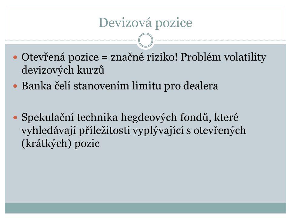 Devizová pozice Otevřená pozice = značné riziko.