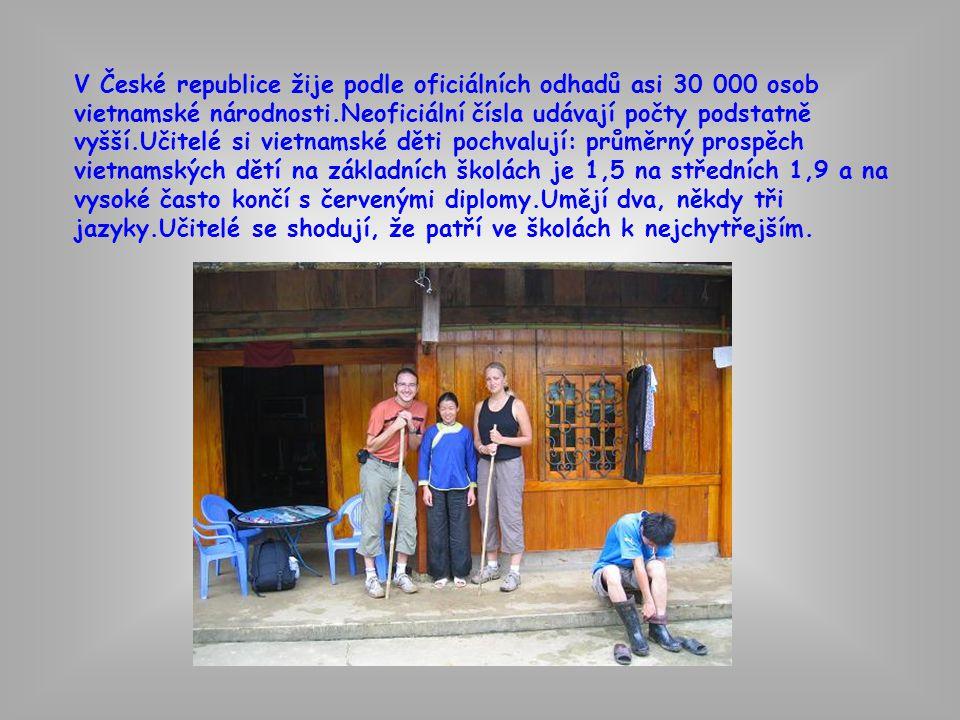 V České republice žije podle oficiálních odhadů asi 30 000 osob vietnamské národnosti.Neoficiální čísla udávají počty podstatně vyšší.Učitelé si vietn