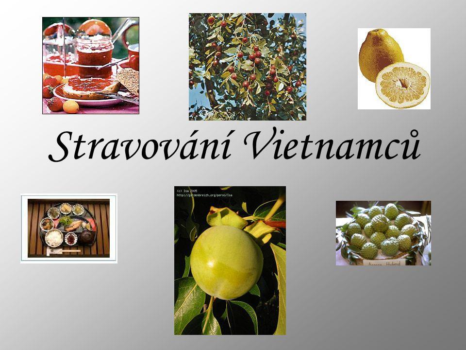 Co Vietnamci rádi jedí za maso.Dá se říct,že jedí skoro všechno co se hýbe.