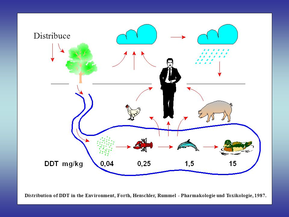 Distribution of DDT in the Environment, Forth, Henschler, Rummel - Pharmakologie und Toxikologie, 1987. Distribuce