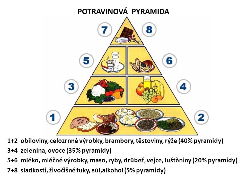 POTRAVINOVÁ PYRAMIDA 1+2 obiloviny, celozrnné výrobky, brambory, těstoviny, rýže (40% pyramidy) 3+4 zelenina, ovoce (35% pyramidy) 5+6 mléko, mléčné výrobky, maso, ryby, drůbež, vejce, luštěniny (20% pyramidy) 7+8 sladkosti, živočišné tuky, sůl,alkohol (5% pyramidy)
