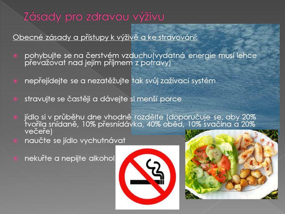 Obecné zásady a přístupy k výživě a ke stravování:  pohybujte se na čerstvém vzduchu(vydatná energie musí lehce převažovat nad jejím příjmem z potrav