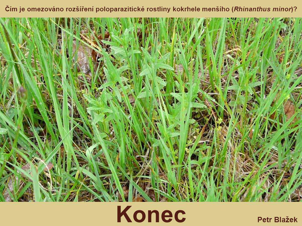 Petr Blažek Konec Čím je omezováno rozšíření poloparazitické rostliny kokrhele menšího (Rhinanthus minor)?