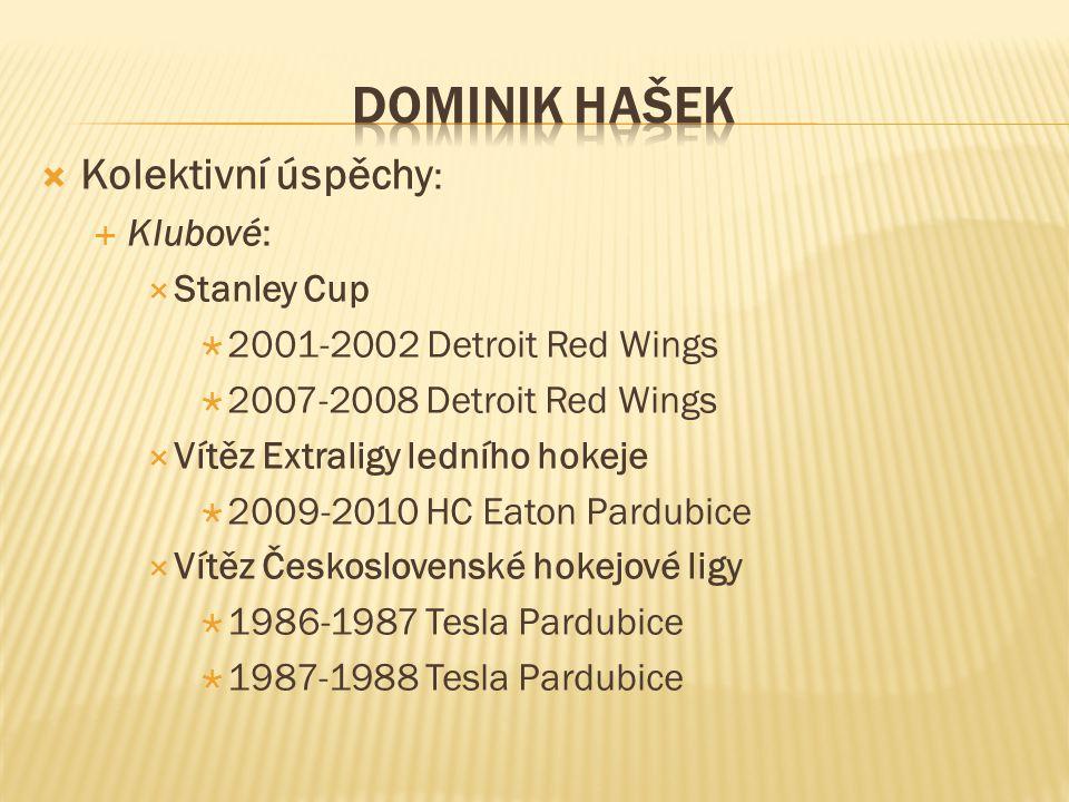  Kolektivní úspěchy :  Klubové:  Stanley Cup  2001-2002 Detroit Red Wings  2007-2008 Detroit Red Wings  Vítěz Extraligy ledního hokeje  2009-20